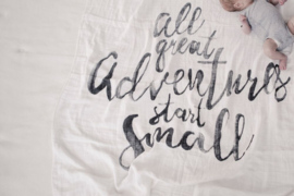 Swaddle - Great adventures