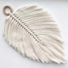 Cotton design - Feather naturel