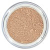 Mineral Foundation Light