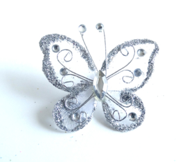 Broche Silverwing