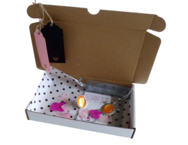 Gift Set Schildpad GO