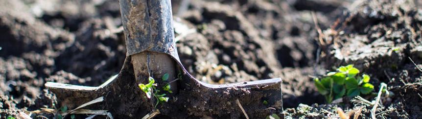 Tuinaarde en compost