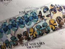 Vlinders t41