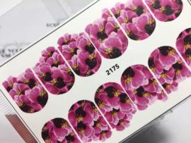 Orchideën 2175