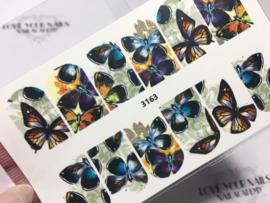 Vlinders 3163