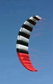 Zebra kites