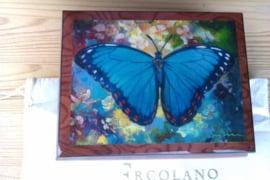 Ercolano Bleu Morpho
