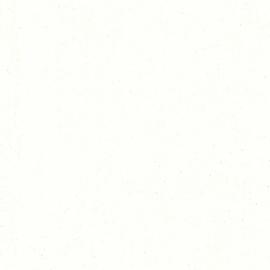 i-paint Dover wit 0.75 liter blik voor ca. 6 m²