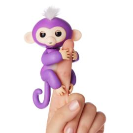 Happy Monkey paars