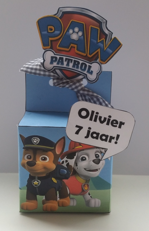 Paw Patrol - Doosje