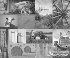 Foto behang Farm Life Noordwand