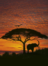 Foto behang African Sunset 4-501