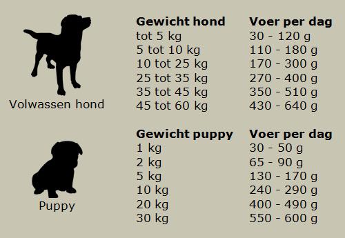 Hondenbrokken Kip Graanvrij | Jachtinstinct Dierenvoeding