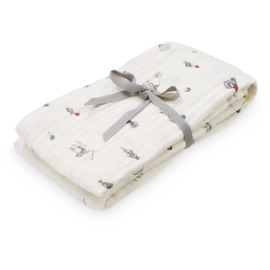Swaddle Holiday