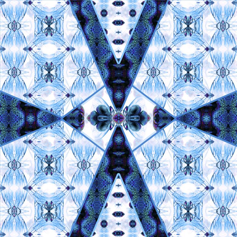 "Entomology Silk Scarf ""Vespa"" Blue"
