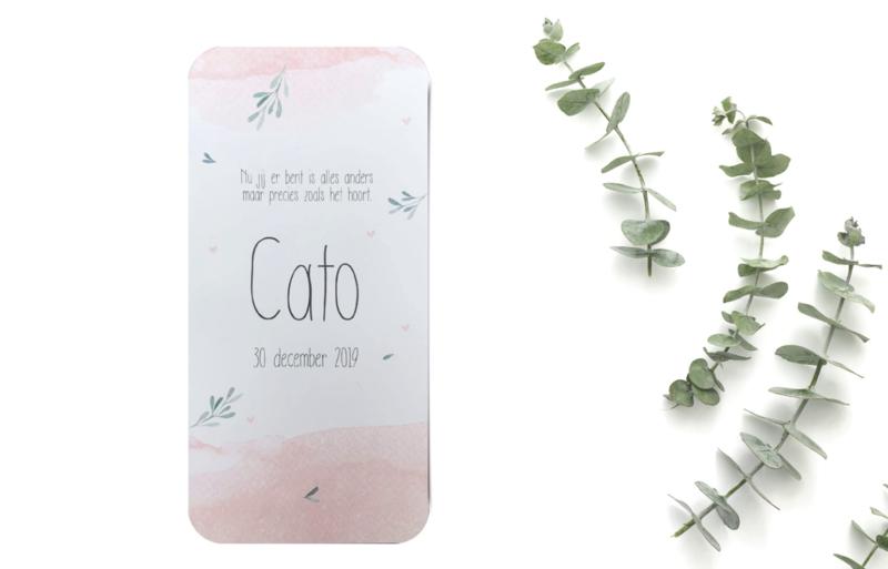 Kaartje Cato