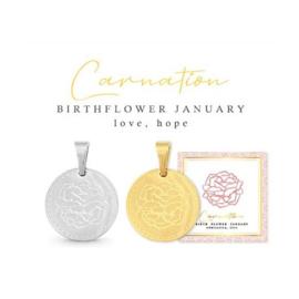 Januari Birth Flower Anjer