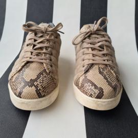 Botticelli sneakers. Mt. 39. Beige/dierenprint/leer.