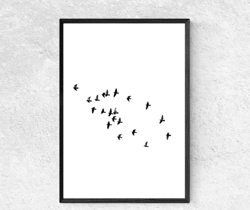 Poster - vogels