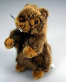 IN 006 ( plush marmot )