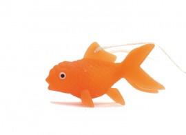 BW 321 ( little happy baby goldfish )