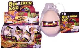AT 2881 ( growing egg dinosaur ) ----- 12 pcs in display