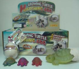 AT 2885 ( growing egg tortoise ) ----- 12 pcs in display