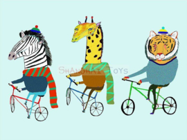 KK ( postcard biking trio )