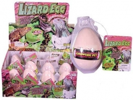 AT 2884 ( growing egg lizard ) ----- 12 pcs in display
