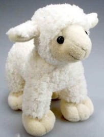 IN 009 ( plush lamb )