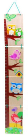 H 070 ( wooden growth chart owl and bird )