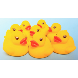 AM 248 ( water squirter duck yellow )