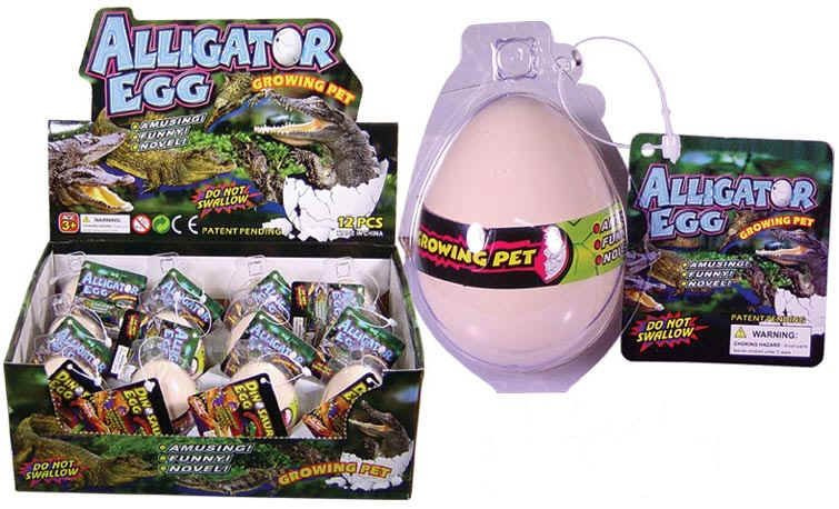 AT 2883 ( growing egg alligator ) ----- 12 pcs in display
