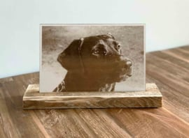Foto op hout   30x20cm