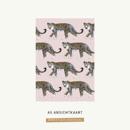 Kaart Leopard | A5