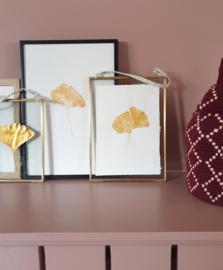 Gouden Ginkgo afdruk in vintage messing lijst - GROOT