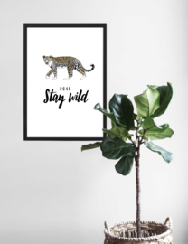 Poster Leopard - Stay Wild