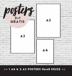 POSTER VOORDEELSET 3 | 1 X A4 & 2 X A3 posters | 2+1 gratis