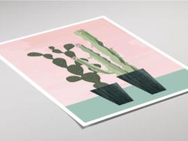 Botanische poster - Cactus