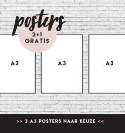 POSTER VOORDEELSET 4 | 3 X A3 posters | 2+1 gratis