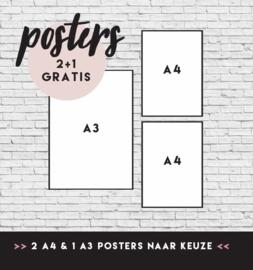 POSTER VOORDEELSET 2 | 2 X A4 & 1 X A3 posters | 2+1 gratis