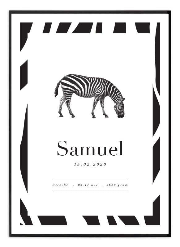 Geboorteposter Zebra