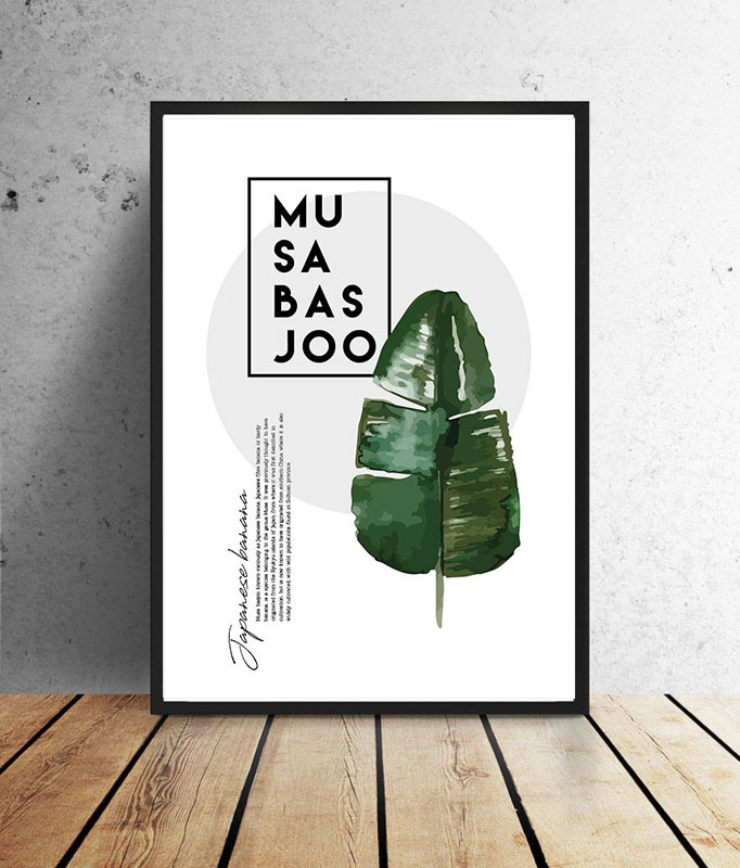 Botanische poster  - Musa Basjoo