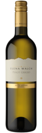 Elena Walch Pinot Grigio I 6 flessen