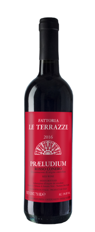 Fattoria Le Terrazze Praeludium Rosso Conero DOC I 6 flessen