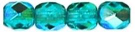 FP04 - x60150 Teal AB