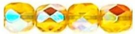 FP04 -x80010 Citrine Yellow AB