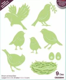 Birds - ( 9 Dies] CED23044