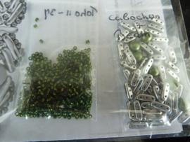 Protect Me - kleuren : zilver en groen [OLivine]