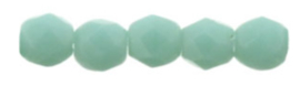 FP 02 -M63130 Matte Opaque Turquoise